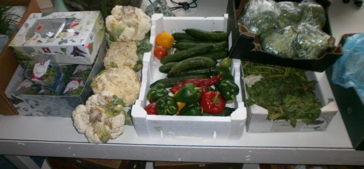 groenten, kruiden, fruit