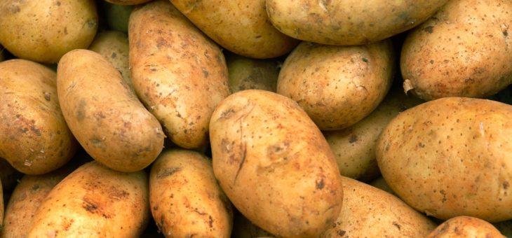 Grote voorraad aardappelen en peren