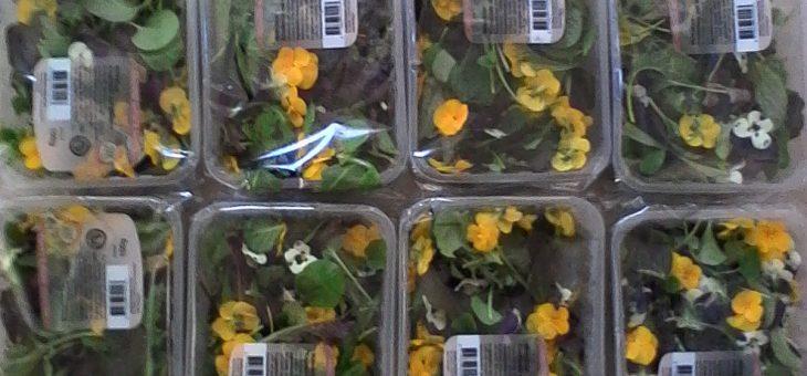 Vrolijke bloemensalade